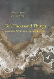 Ten Thousand Things (Book Cover)