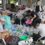 'Purification From the Start' – Recycling in the Buddhist Organization Tzuchi, Taiwan